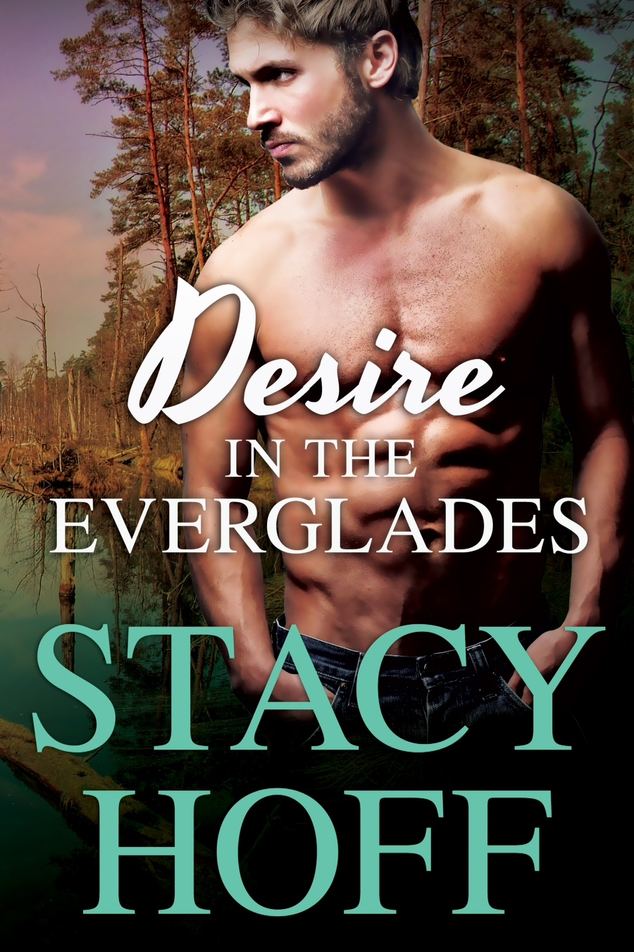 Desire in the Everglades Book Cover